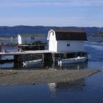 Newfoundland_Twillinggate1.jpg