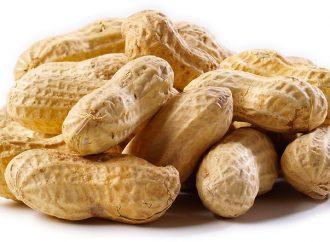 Budget 2019: Peanuts for International Development
