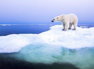 Quelle nouvelle structure de gouvernance pour l'Arctique?